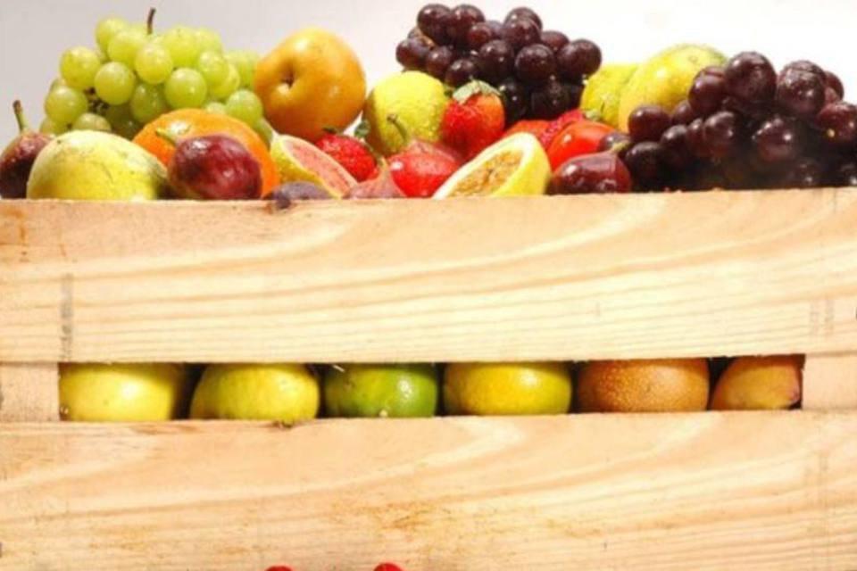 Hortifrutis