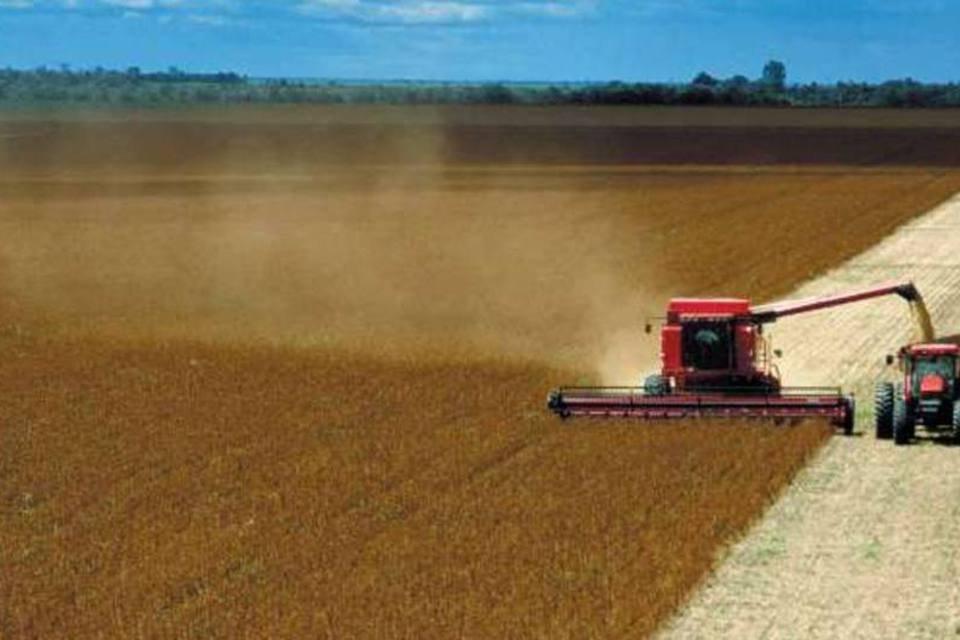 Agropecuária - 110.037 empregos criados no país