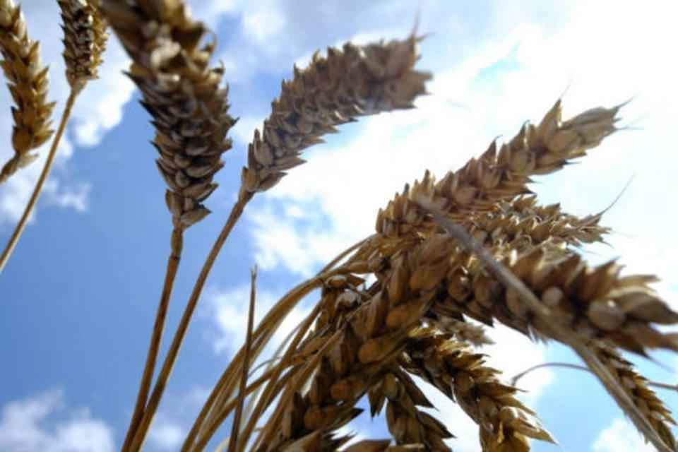 Agropecuária: 0,4%