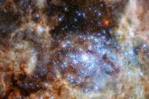 Amostra de estrelas