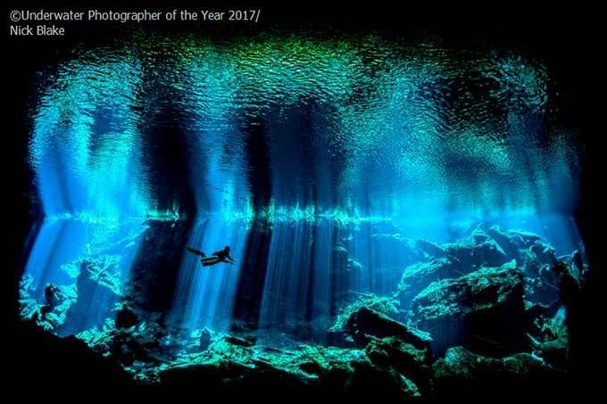 Fotógrafo Subaquático Britânico do Ano, 2017