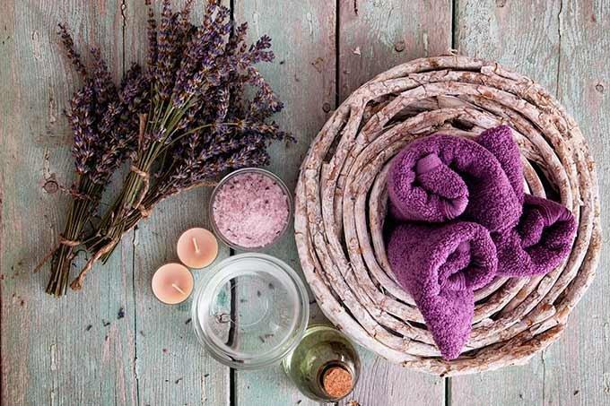 massagem; spa; produtos naturais; relaxar