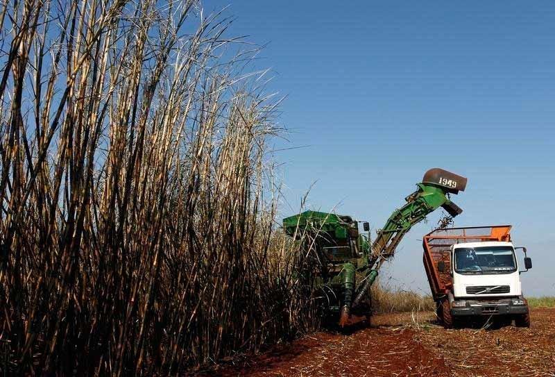 Produção de açúcar e etanol: berço do grupo Cosan, que hoje opera também combustíveis, lubrificantes, gás e ferrovias