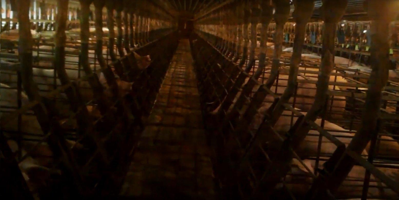 Criação de porcos da Tosh Animals, que fornece carne suína para a JBS, em vídeo feito pela ONG Mercy For Animals