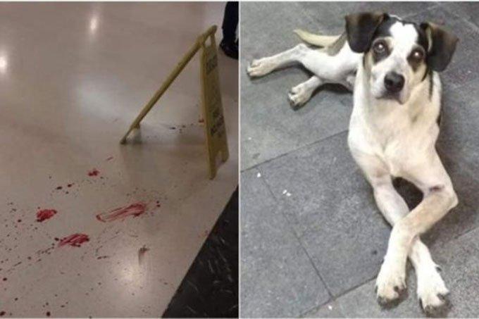Imagens divulgadas por ativistas mostram marcas de sangue no chão do hipermercado.