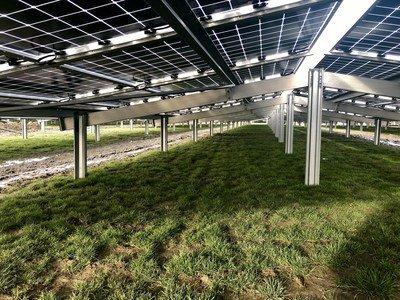 Parte de trás dos módulos bifaciais tipo N da Jolywood instalados no Zonnepark Rilland (PRNewsfoto/Jolywood (Taizhou) Solar Techno)