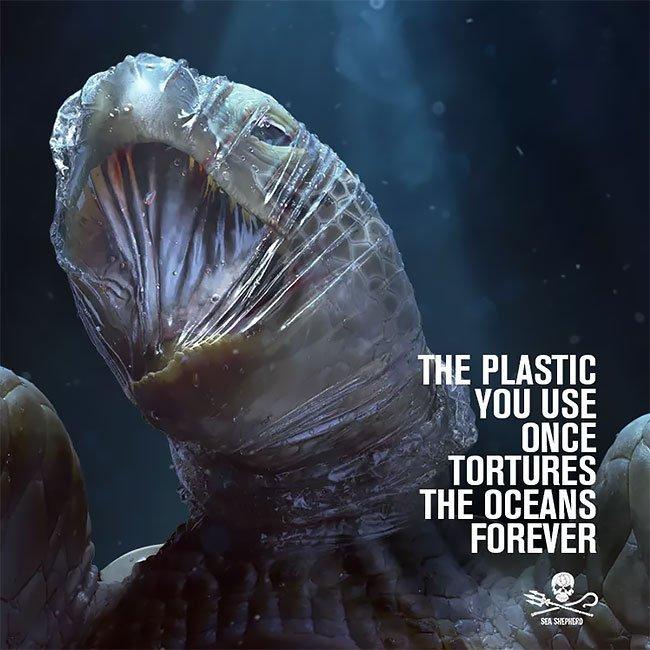Campanha da entidade Sea Sea Shepherd: alerta para problema do lixo no oceano