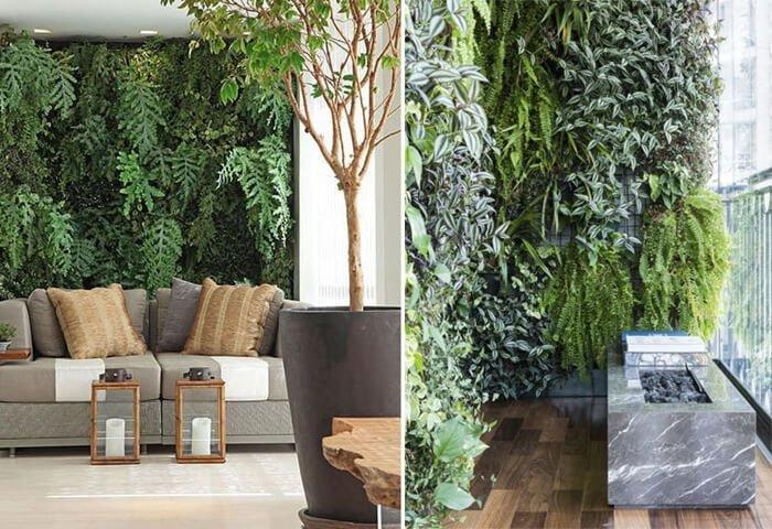 Projetos da Revista Viva Decora utilizam jardins verticais