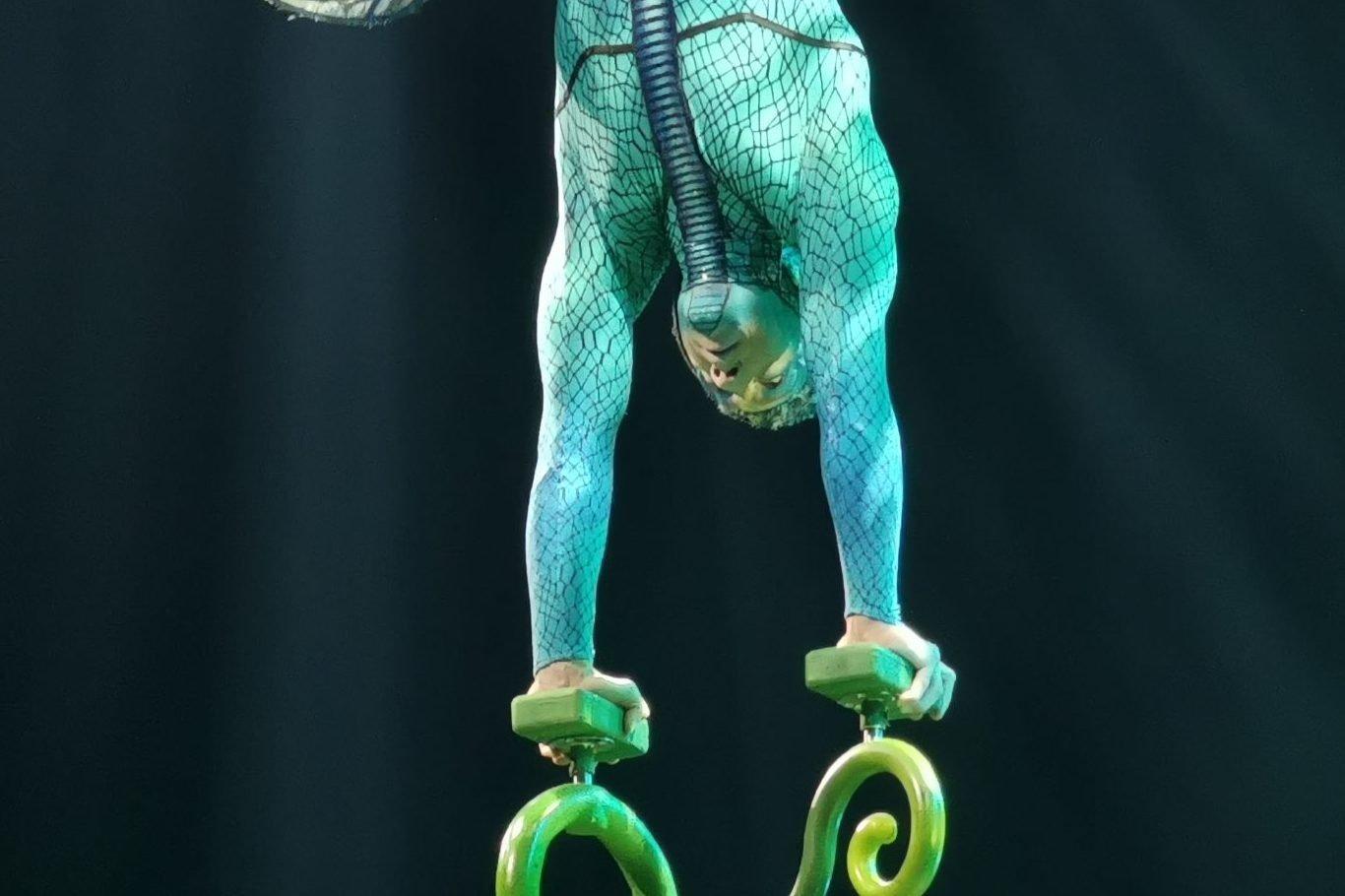 Apresentação Ovo Cirque du Soleil
