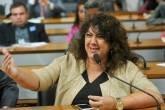 Deputada Christiane Yared na Comissão de Direitos Humanos e Legislação Participativa.