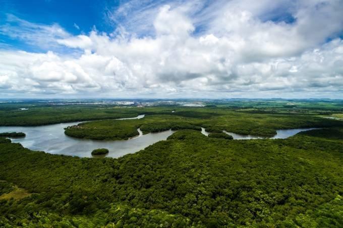 amazonia_bioeconomia_retomada_verde_negócios_empresas_coalizão
