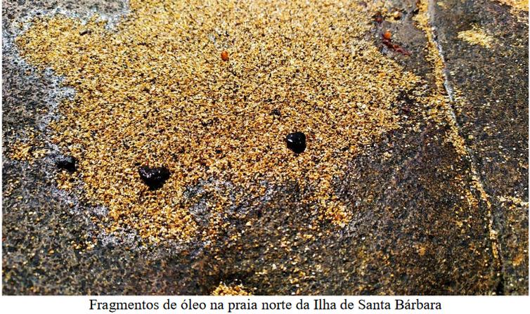 Resíduos do óleo que atingiu a costa nordestina chegam à região de Abrolhos