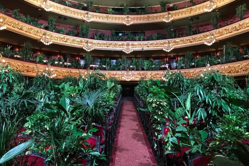 Gran Teatre del Liceu de Barcelona reabre com concerto exclusivo para plantas