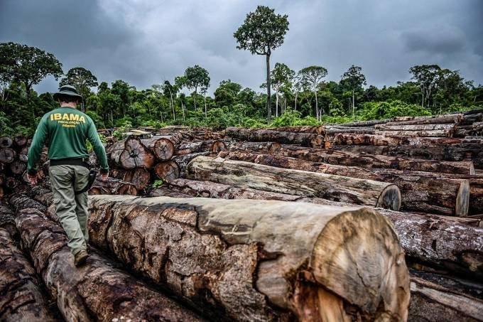 Governo alemão alerta que Amazônia ameaça acordo UE-Mercosul