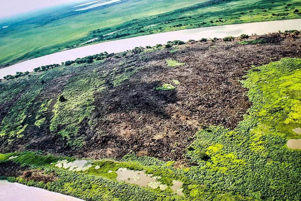 Pantanal, queimadas no MS