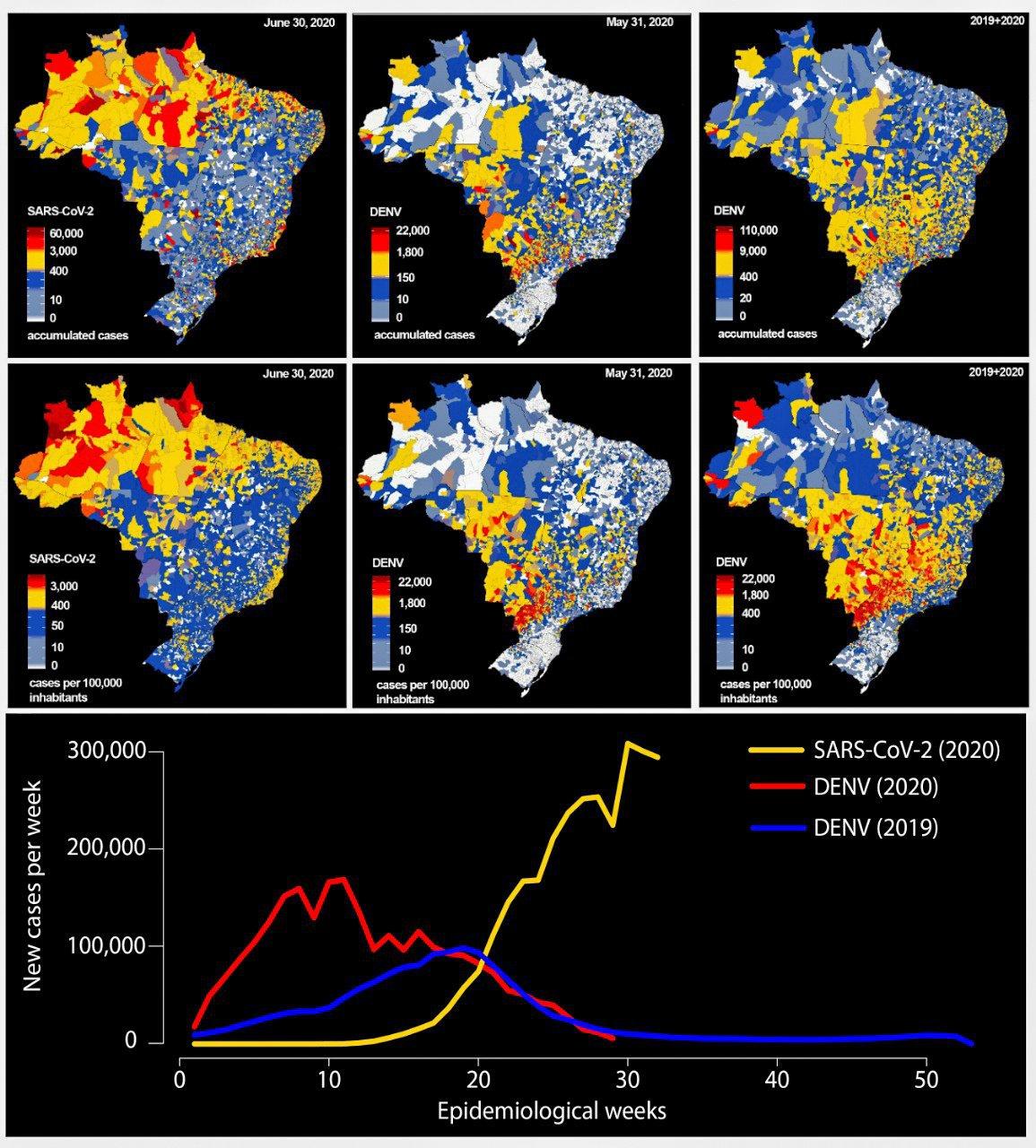 Comparação entre distribuição geográfica de casos de Covid-19 e sua incidência até 30 de junho de 2020 e de casos de dengue e incidência no Brasil até 31 de maio de 2020; e soma de todos os casos de dengue e incidência de 2019 até 31 de maio de 2020