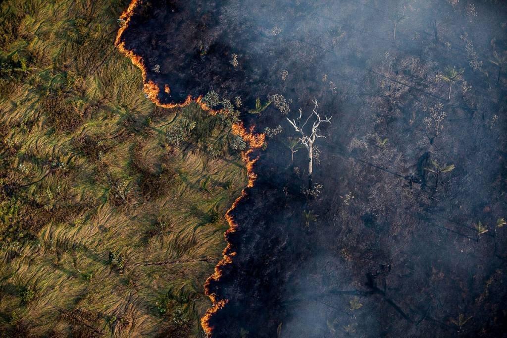 queimada_amazonia_pantanal