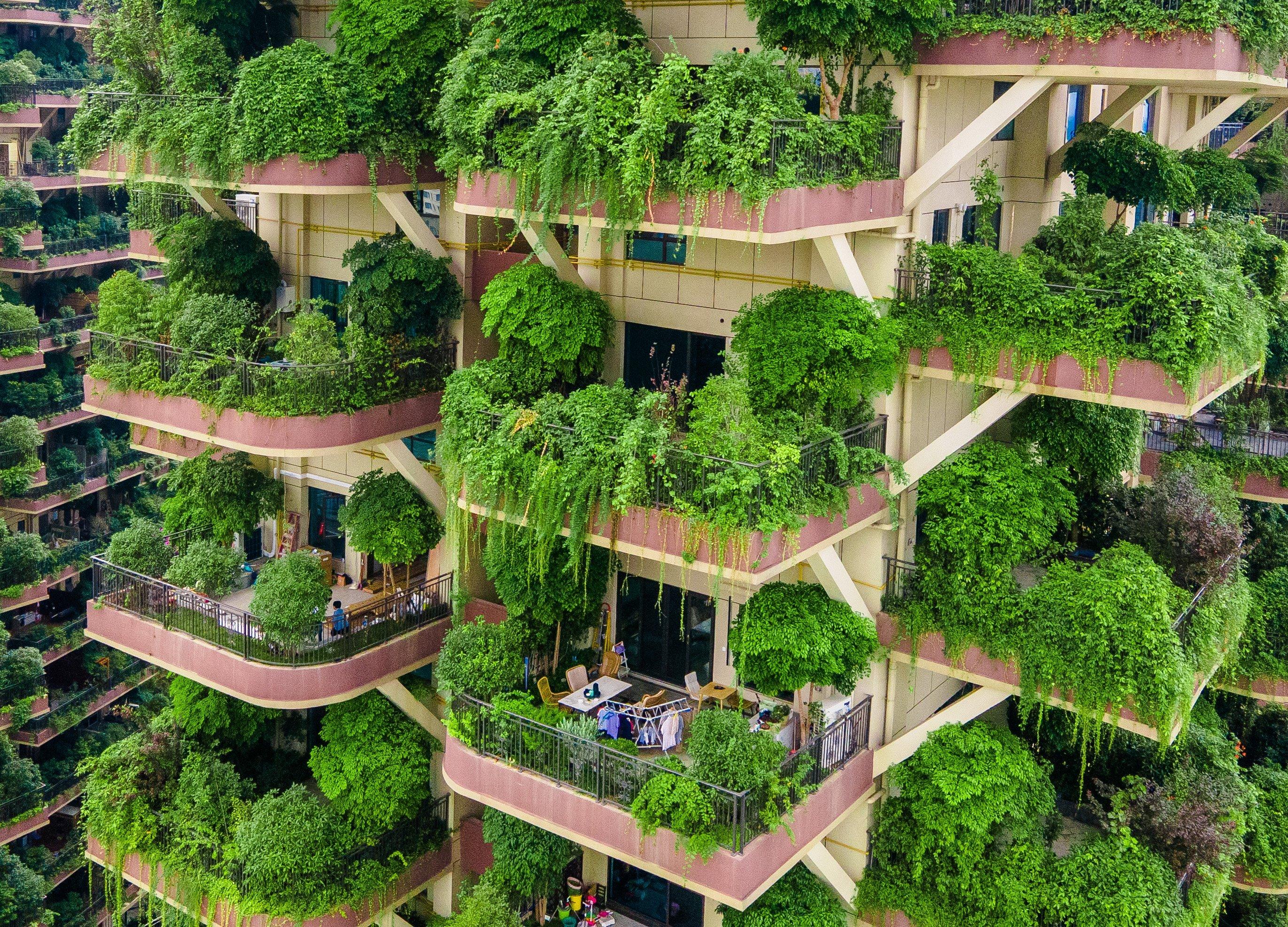 Apartamentos com varandas cobertas por plantas em conjunto residencial em Chengdu, província de Sichuan, no sudoeste da China