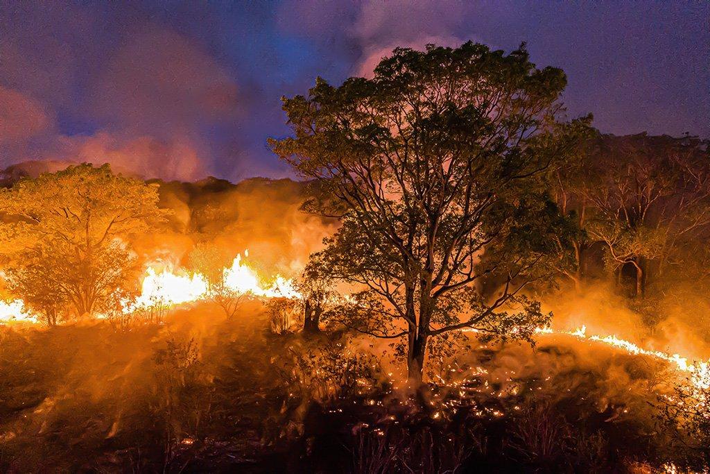 Período de seca preocupa autoridades para os perigos de incêndio