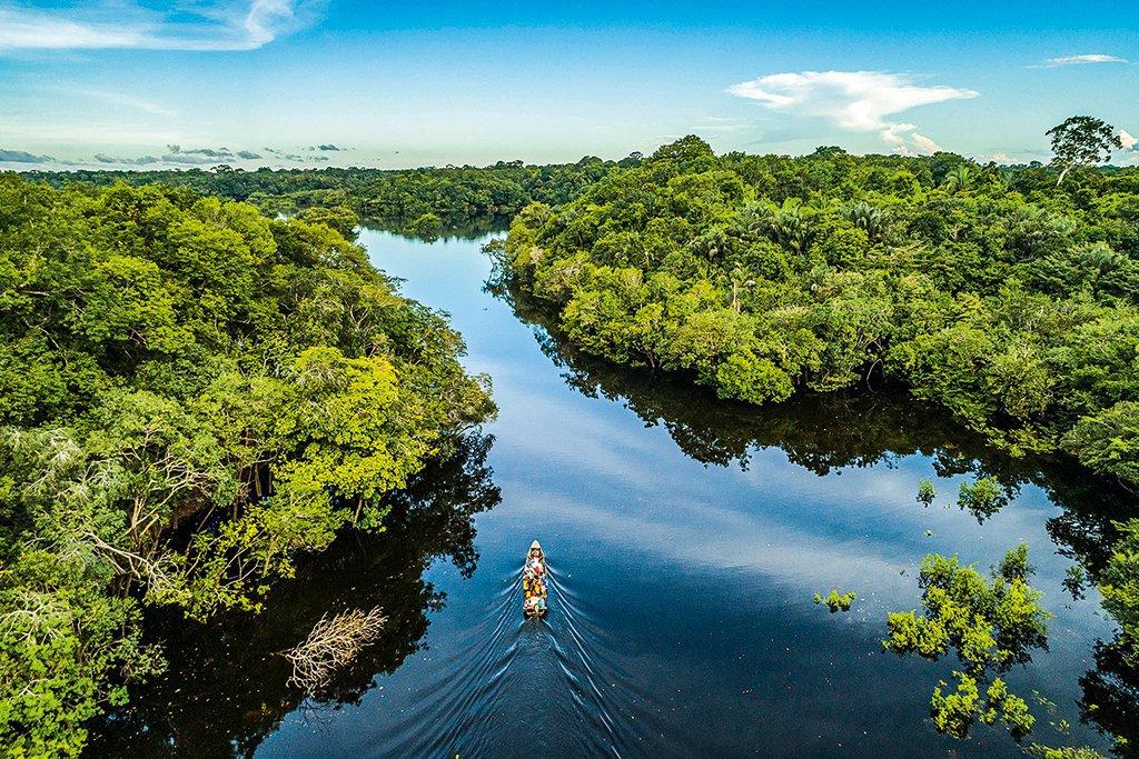 amazônia-carbono-fazenda