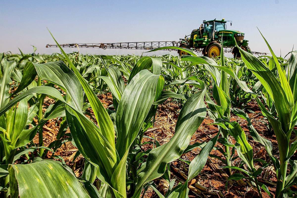 Grupo SLC Agrícola; Pulverização; Agronegócio; Soja