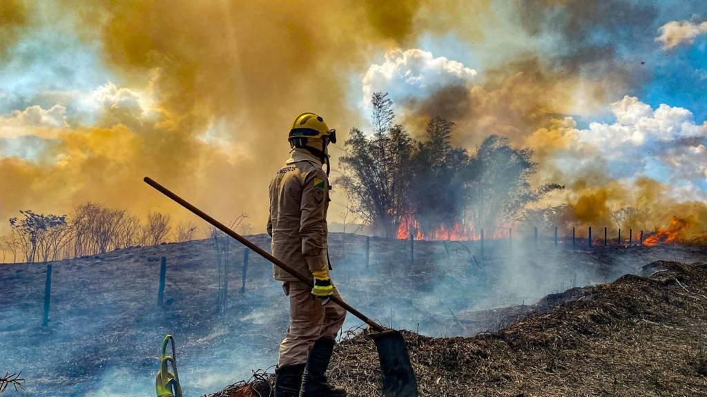 QUEIMADA ACRE- SERGIO VALE 20-08-2020 (4) Brigadista combate chamas em Rio Branco, no Acre (Foto: Sérgio Vale/Amazônia Real/20/08/2020)