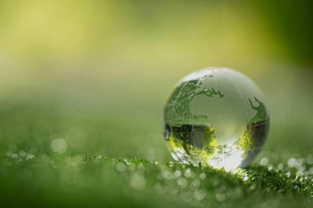 globo de cristal descansando na grama em uma floresta