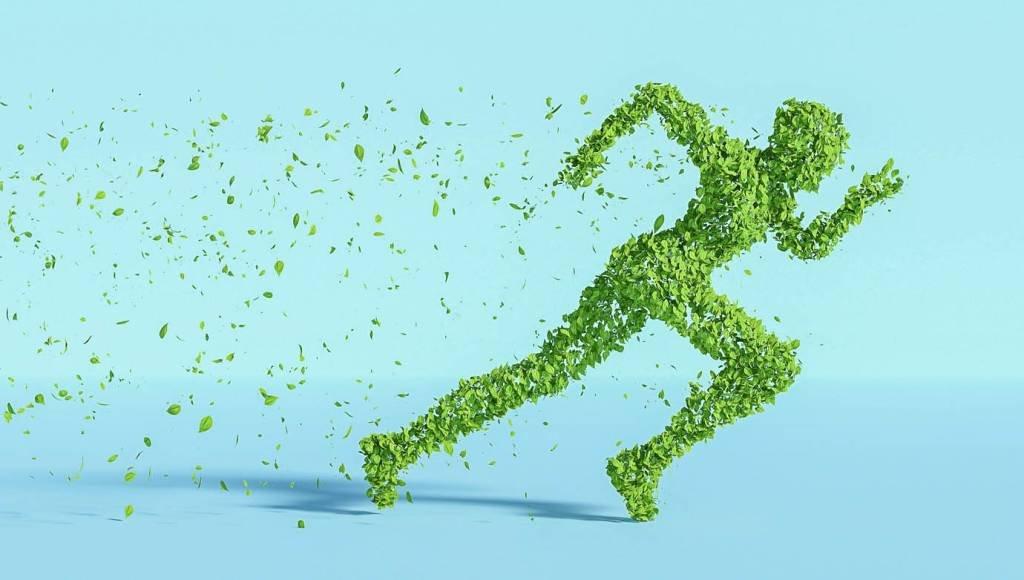 Imagem de um ser humano feito de folhas