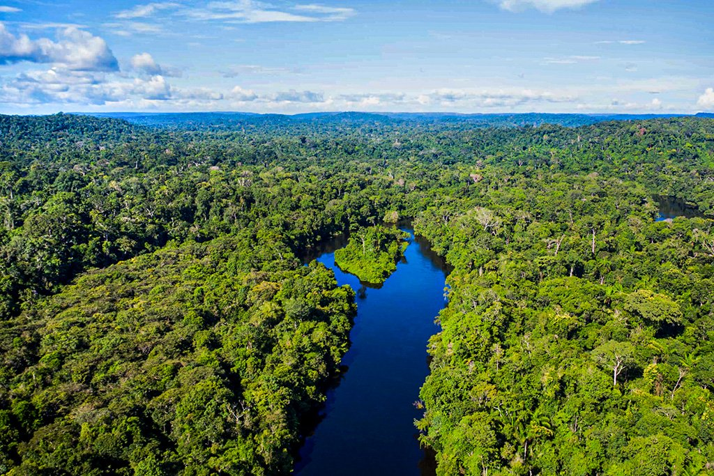 Senado decide hoje se Fundo Amazônia sairá do papel
