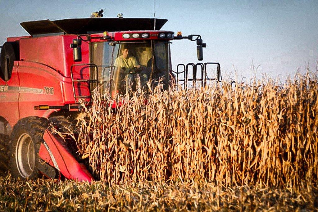 11. Fazendeiro e administrador de agronegócio