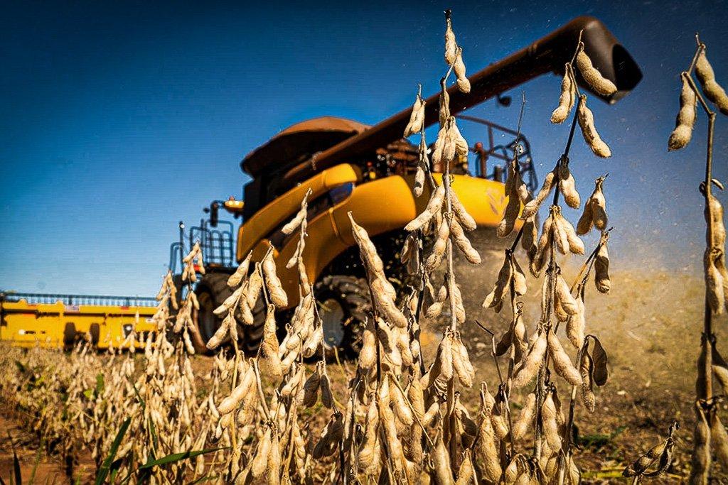 FecoAgro: Mercado de grãos no RS terá melhor custo-benefício em uma década