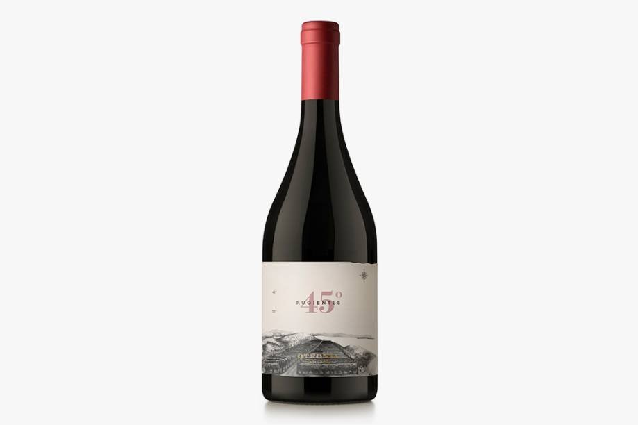 025315 Otronia 45 Rugientes Pinor Noir 1 1 E-commerce from World Wine grows 300% na pandemic