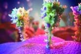 Imagem das proteínas das espículas, renderizada por um artista