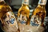 cerveja Tiger
