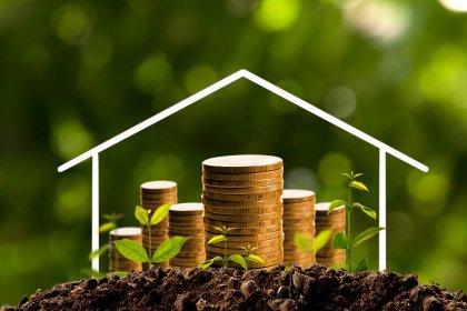 Especialista em FII de CRI explica a importância de reinvestir o dividendo