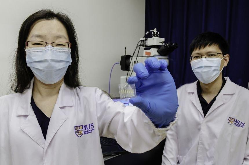 Novo exame de sangue mostra se tratamento contra câncer teve efeito em 24h